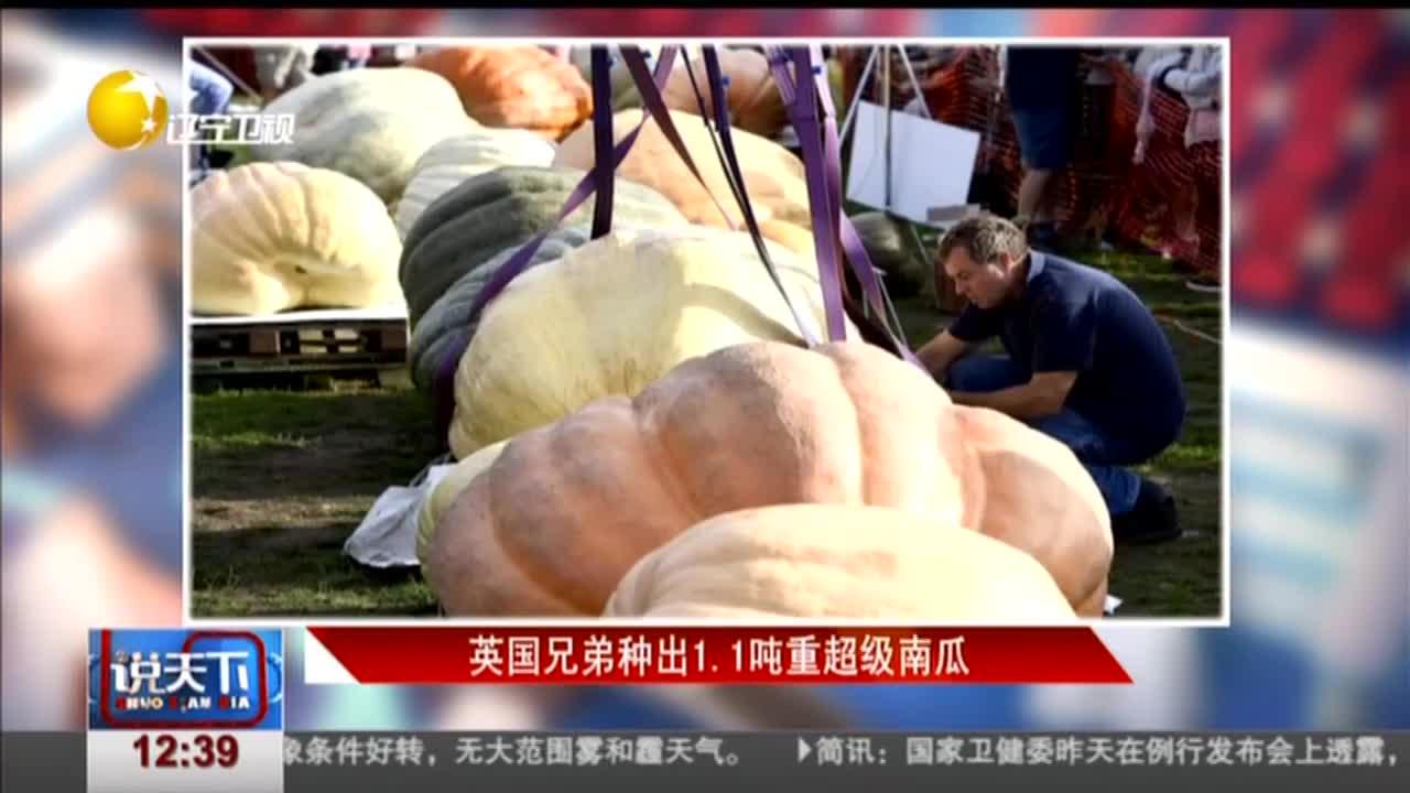 [视频]英国兄弟种出1.1吨重超级南瓜