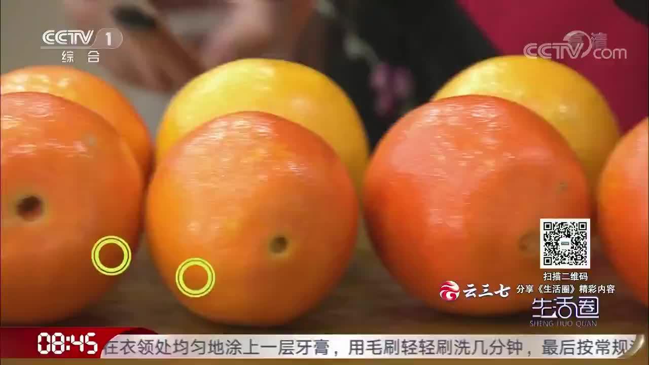 [视频]挑橙子看公母 是真的吗?