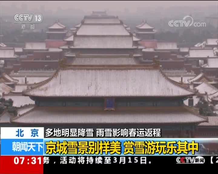 [视频]多地明显降雪·北京 迎来明显降雪 雪景刷爆朋友圈