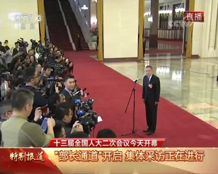 """[十三届全国人大二次会议开幕会]""""部长通道"""" 澎湃新闻记者向国家市场监督管理总局局长张茅提问"""