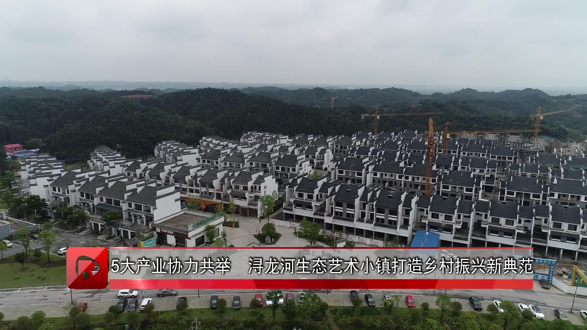 五大产业协力共举 浔龙河生态艺术小镇打造乡村振兴新典范