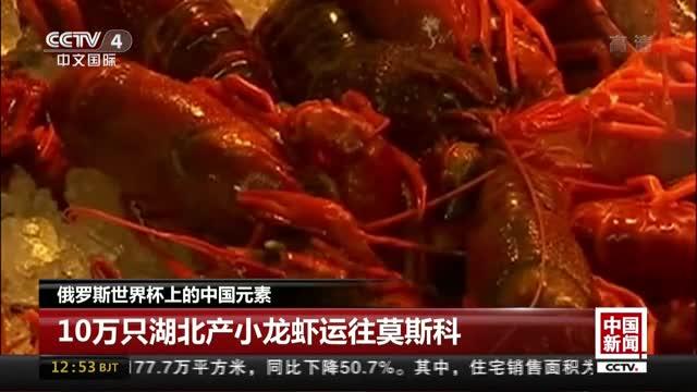 [视频]俄罗斯世界杯上的中国元素:10万只湖北产小龙虾运往莫斯科