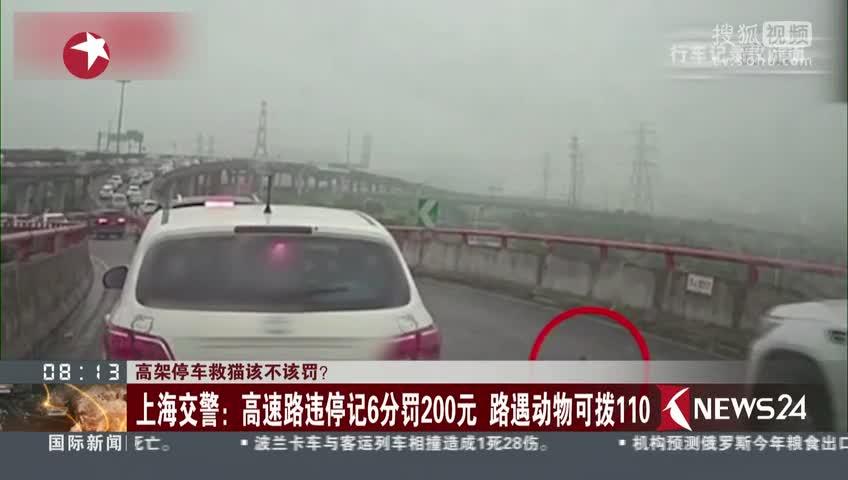 [视频]高架停车救猫该不该罚? 上海交警:高速路违停记6分罚200元 路遇动物可拨110