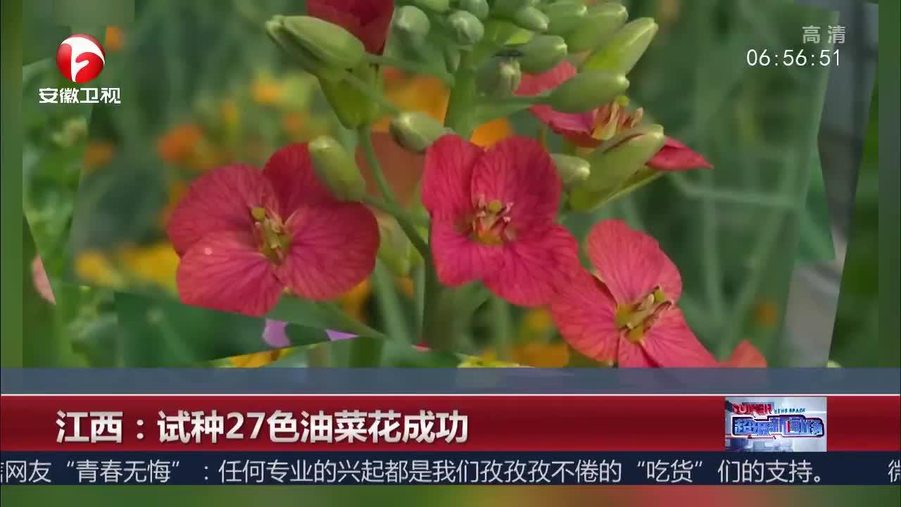 [视频]江西:试种27色油菜花成功
