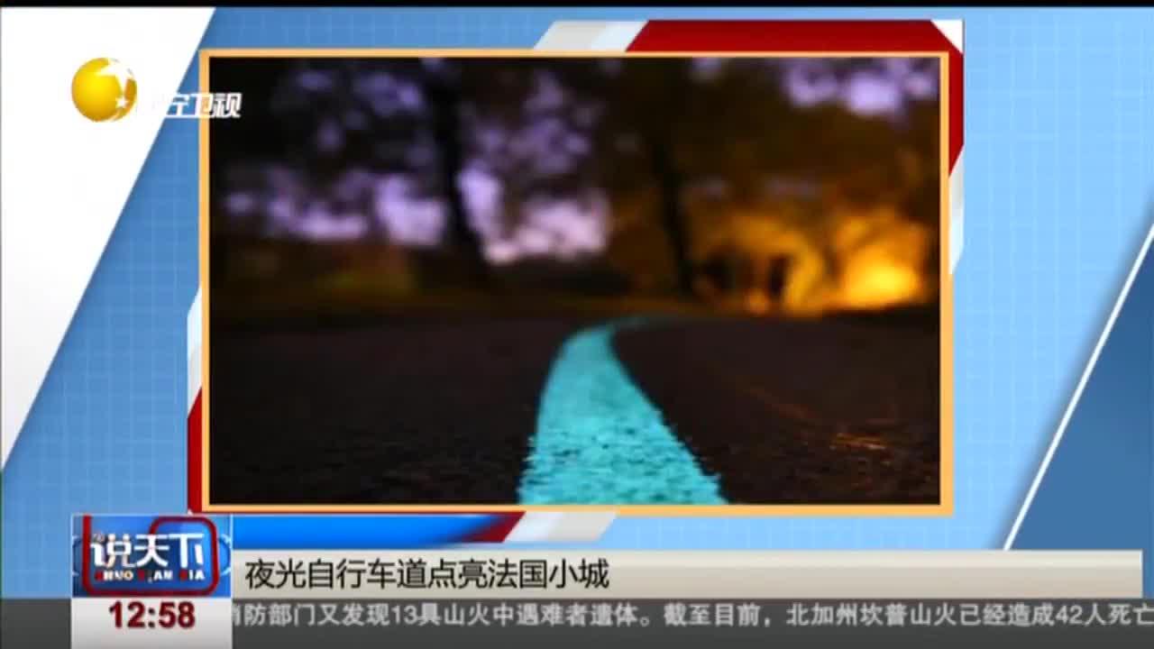 [视频]夜光自行车道点亮法国小城