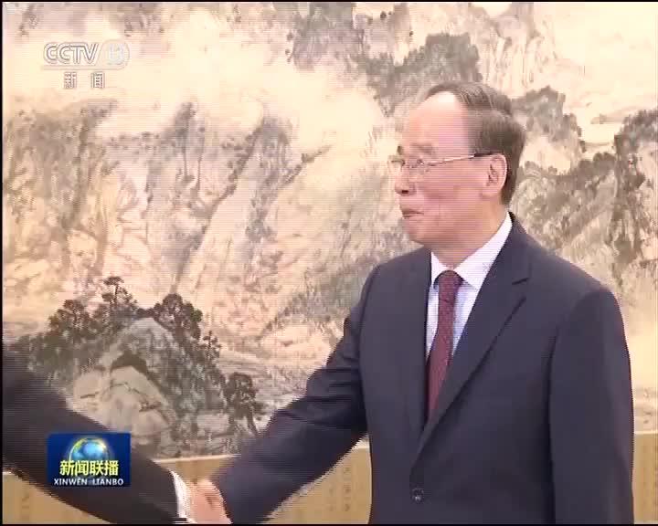 [视频]王岐山会见第十届中英政党对话英方代表团