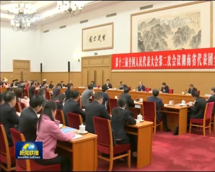 [视频]王岐山参加湖南代表团审议