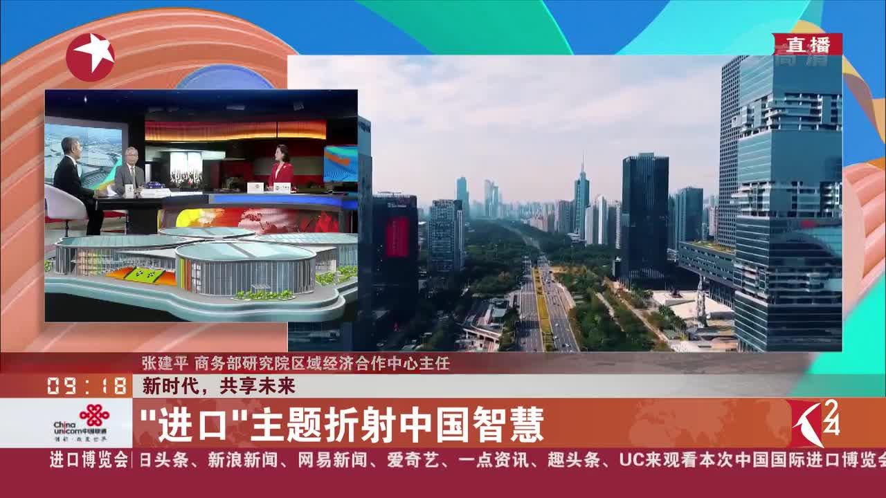 """[视频]张建平:""""进口""""主题折射中国智慧"""