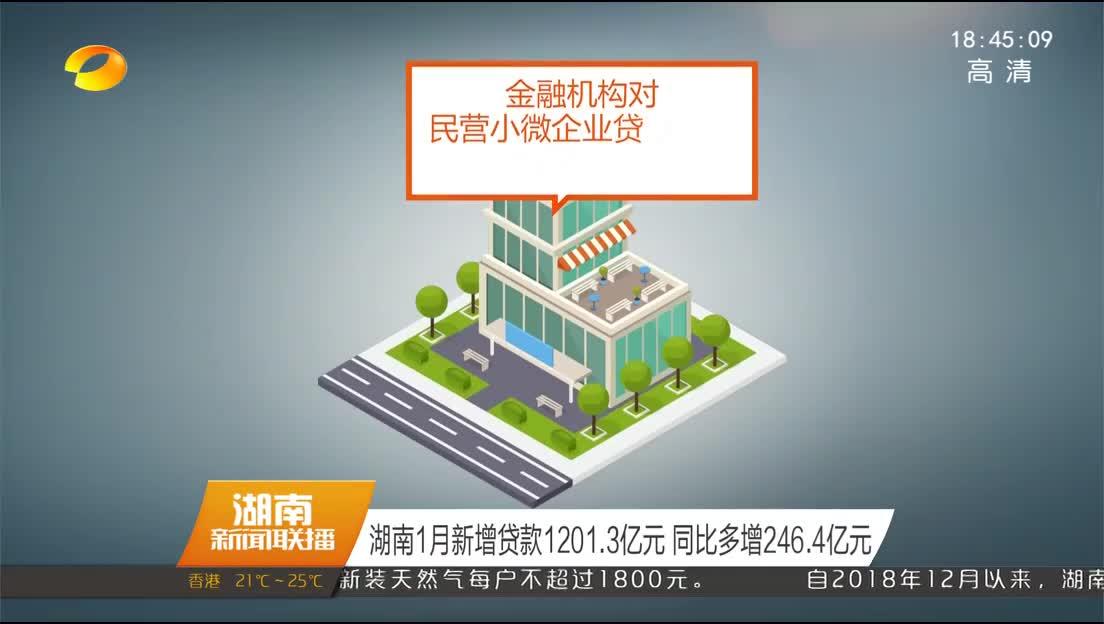 湖南1月新增贷款1201.3亿元 同比多增246.4亿元