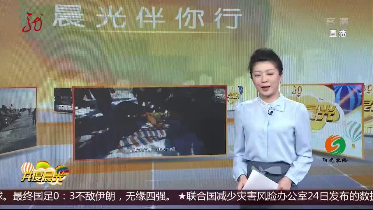 [视频]邂逅东北虎 虎威已不在