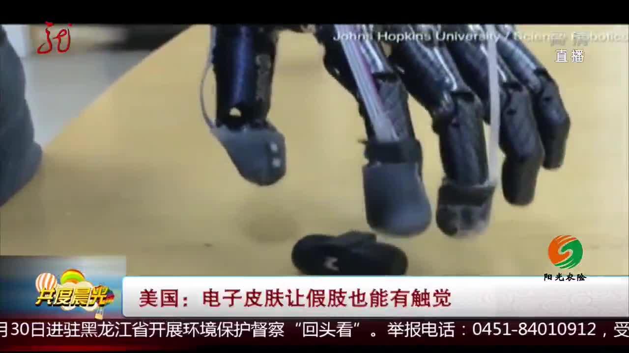 [视频]美国:电子皮肤让假肢也能有触觉