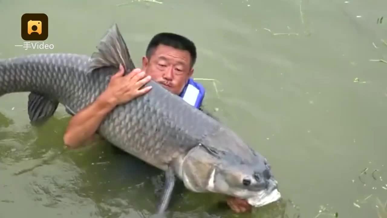 """[视频]中国男子钓起150斤重大鱼后选择放生 外国网友赞其""""尊重生命"""""""