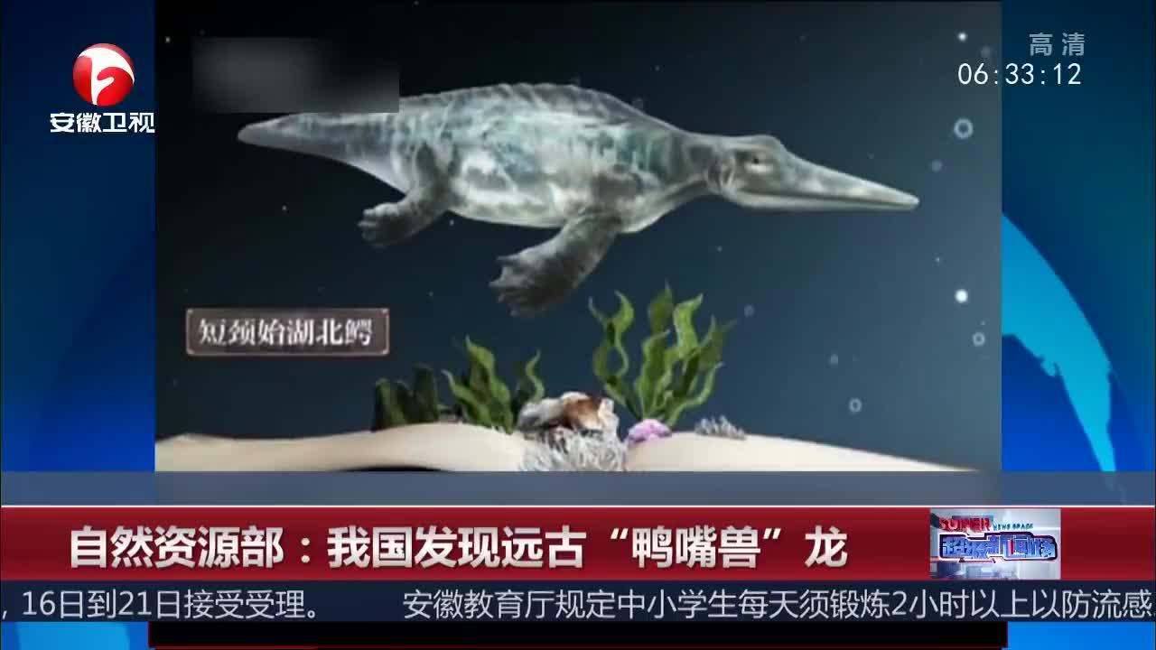 """[视频]自然资源部:我国发现远古""""鸭嘴兽""""龙"""