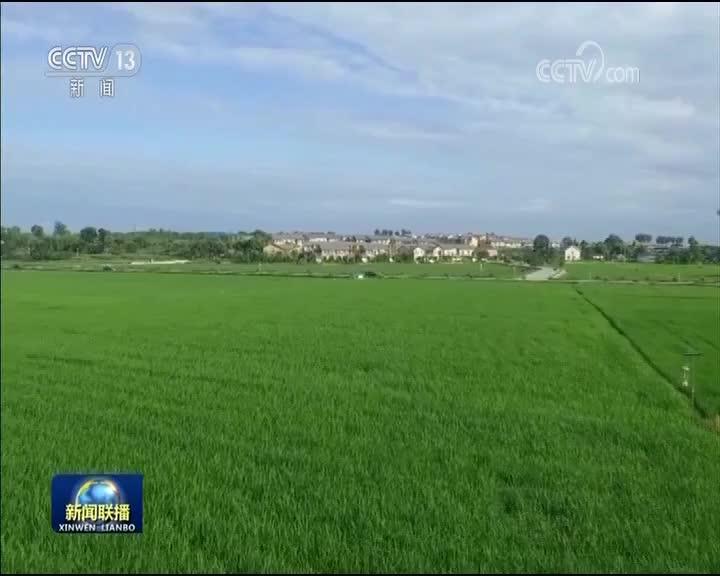 [视频]发改委:2020年形成绿色发展价格机制