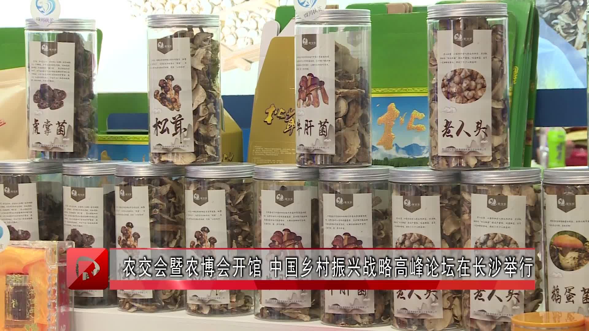 农交会暨农博会开馆 中国乡村振兴战略高峰论坛在长沙举行