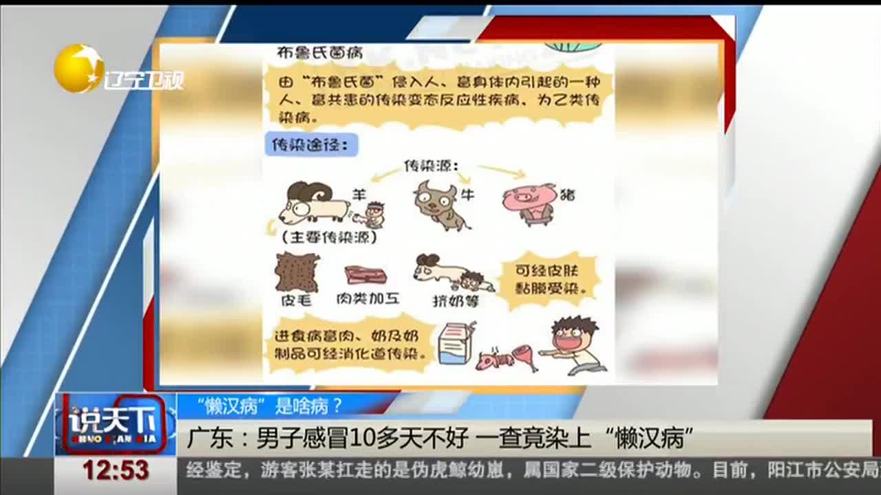 """[视频]""""懒汉病""""是啥病?发热多汗乏力易疲劳 """"懒汉病""""学名布鲁氏菌病"""