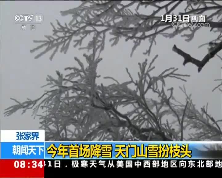 [视频]张家界 今年首场降雪 天门山雪扮枝头