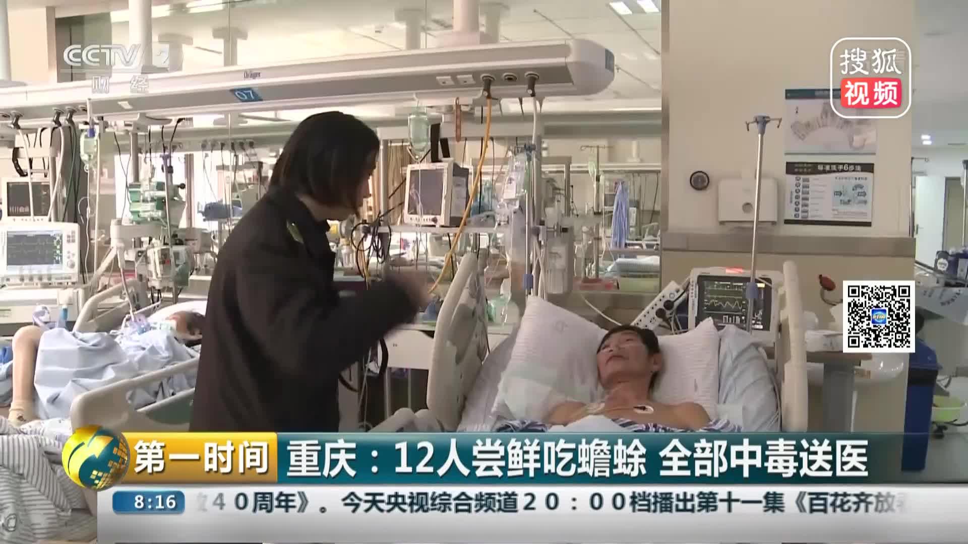 [视频]重庆:12人尝鲜吃蟾蜍 全部中毒送医
