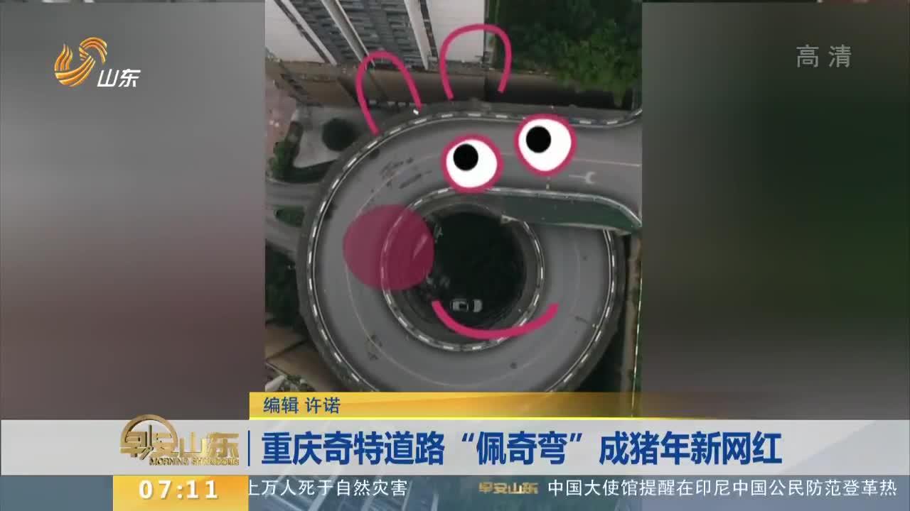 """[视频]重庆奇特道路""""佩奇弯""""成猪年新网红"""