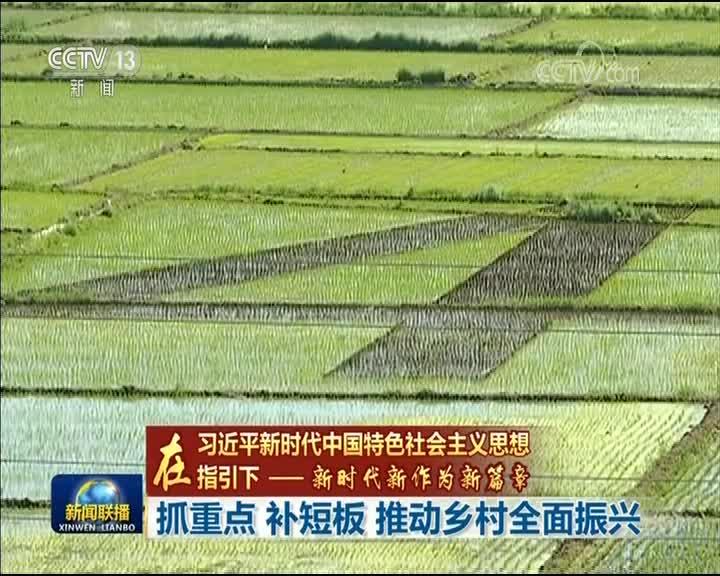 [视频]【在习近平新时代中国特色社会主义思想指引下——新时代 新作为 新篇章】抓重点 补短板 推动乡村全面振兴