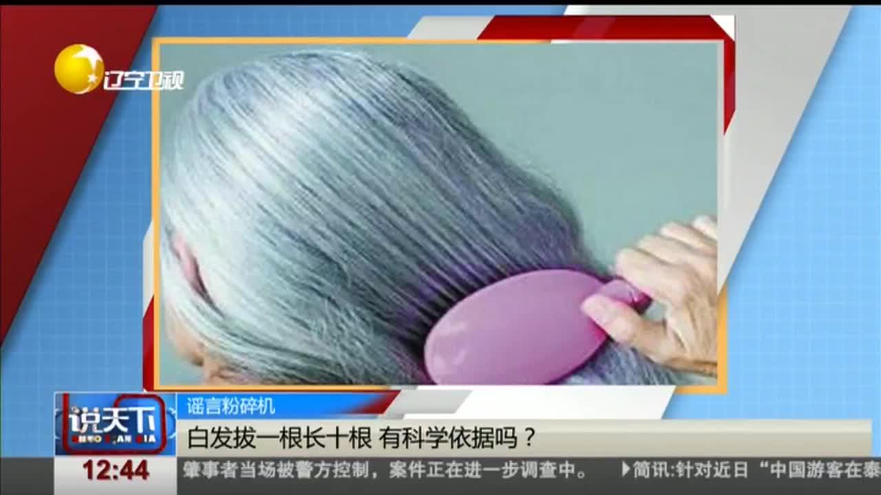 [视频]谣言粉碎机 白发拔一根长十根 有科学依据吗?
