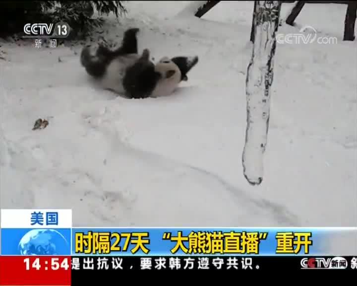 """[视频]美国 时隔27天""""大熊猫直播""""重开"""