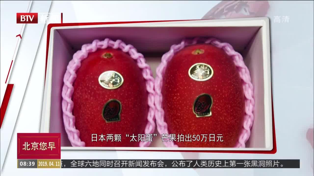 """[视频]日本两颗""""太阳蛋""""芒果拍出50万日元"""