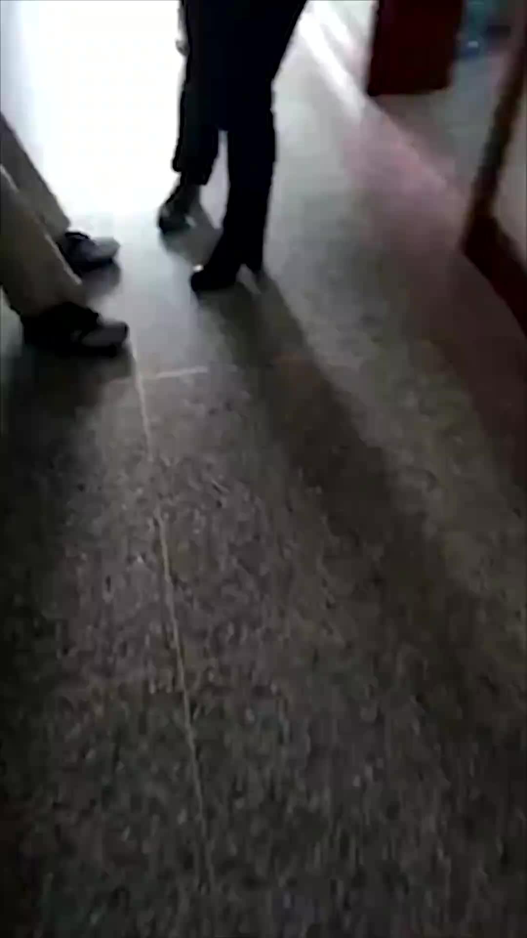 [视频]流浪狗疑狂犬病发作连伤多人 家长持打狗棒送孩子上学