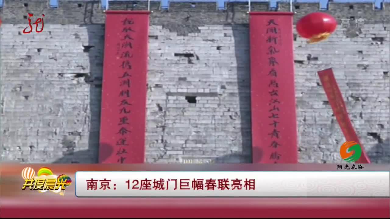 [视频]南京:12座城门巨幅春联亮相
