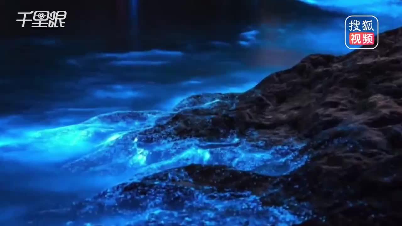 """[视频]平潭邂逅美丽的""""蓝眼泪"""" 璀璨蓝光如梦如幻惊艳海岸线"""