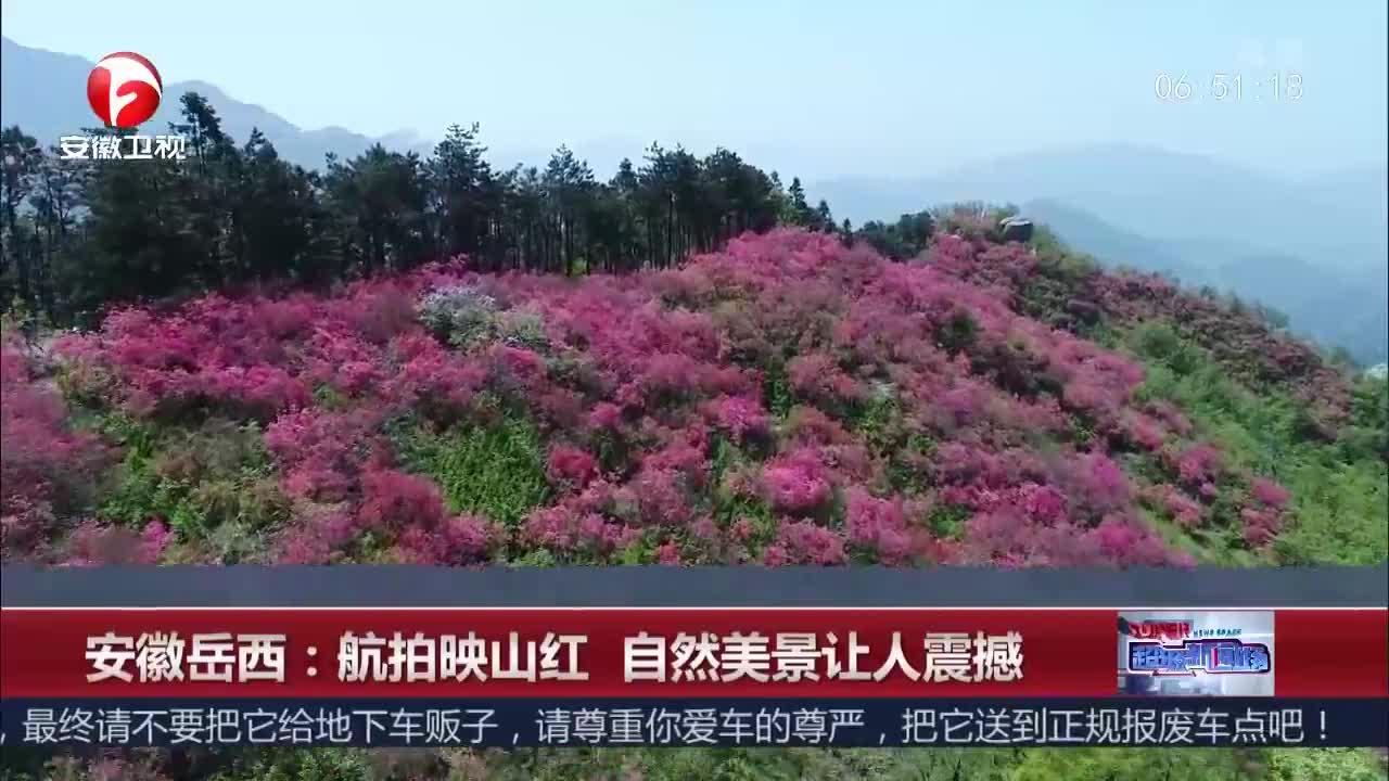 [视频]安徽岳西:航拍映山红 自然美景让人震撼