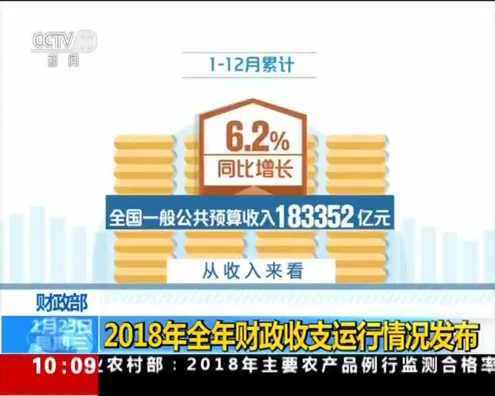 [视频]财政部:2018年全年财政收支运行情况发布