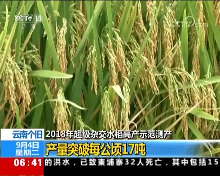 [视频]2018年超级杂交水稻高产示范测产 云南个旧 产量突破每公顷17吨