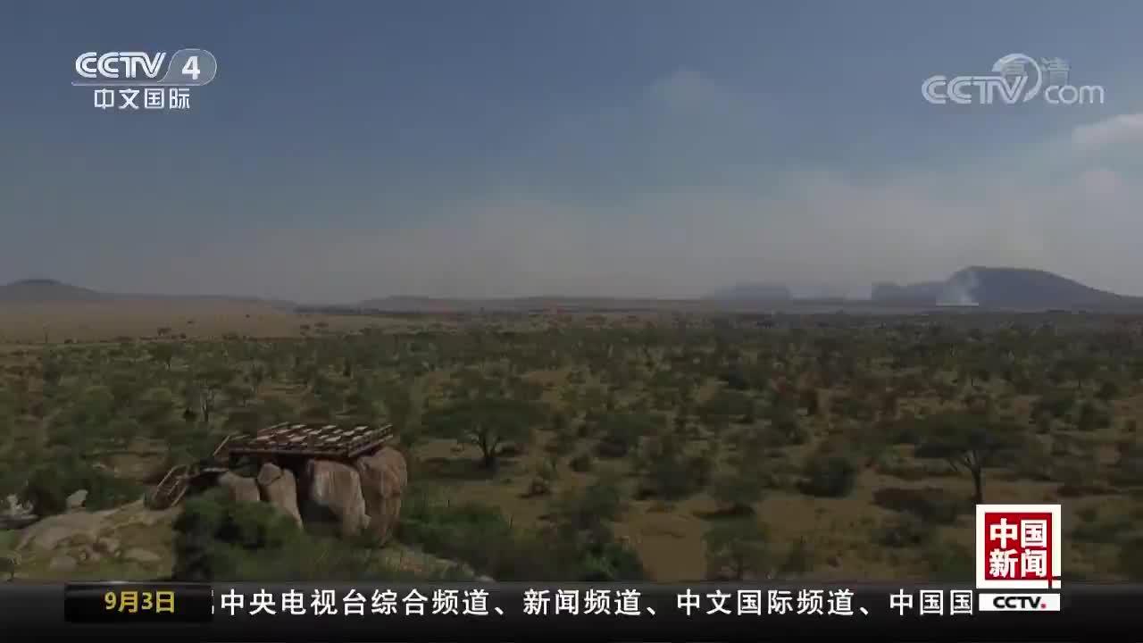 [视频]中国赴非旅游人次年均增长40%以上
