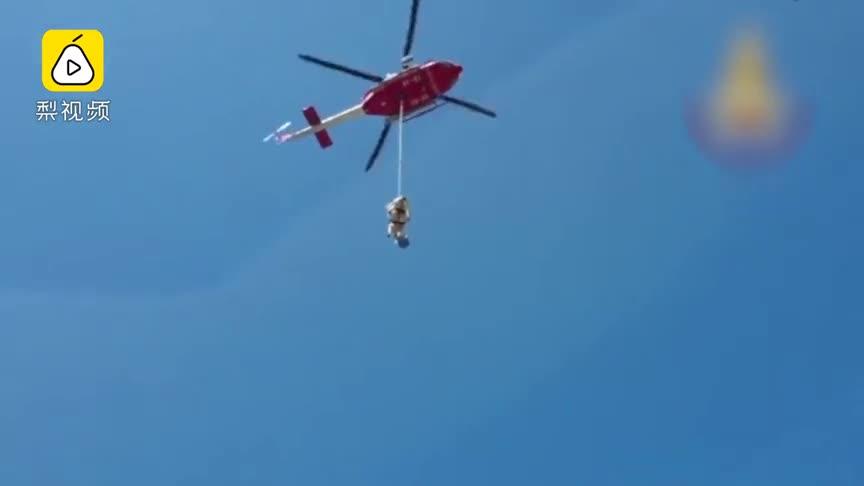 [视频]奶牛飞上天!意消防员这样救奶牛