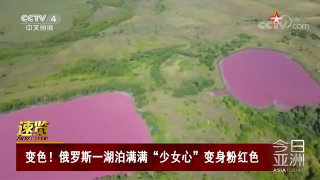 """[视频]俄罗斯一湖泊满满""""少女心""""变身粉红色"""