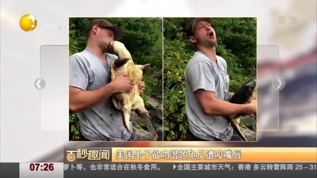 [视频]美国男子欲吻潜颈龟反遭咬嘴唇