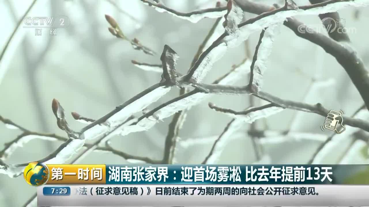 [视频]湖南张家界:迎首场雾凇 比去年提前13天