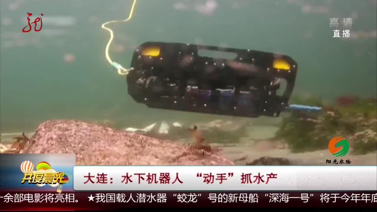 """[视频]大连:水下机器人 """"动手""""抓水产"""