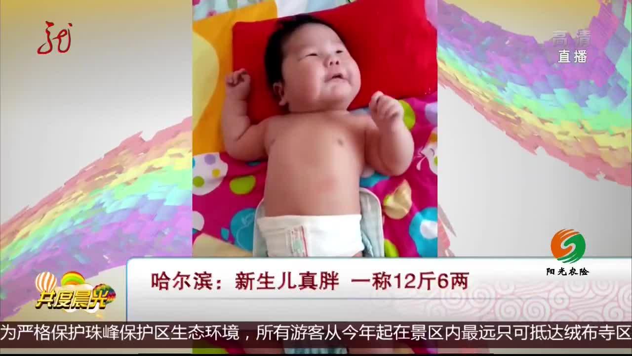 [视频]哈尔滨:新生儿真胖 一称12斤6两
