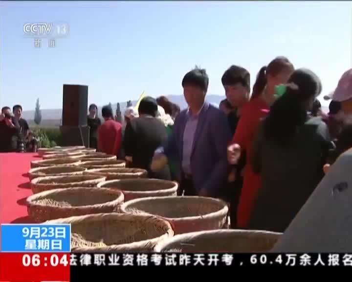 """[视频]今天迎来首个""""中国农民丰收节"""" 各地举行活动庆祝首个农民丰收节"""
