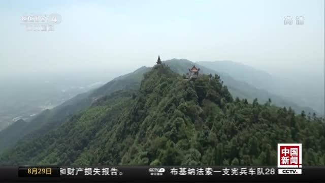 [视频]重庆发现世界濒危物种桃花水母