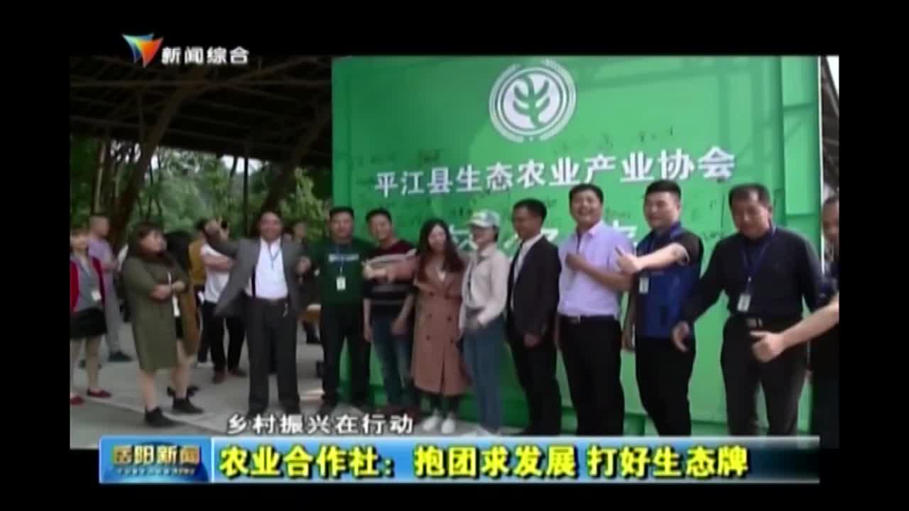 农业合作社:抱团求发展 打好生态牌