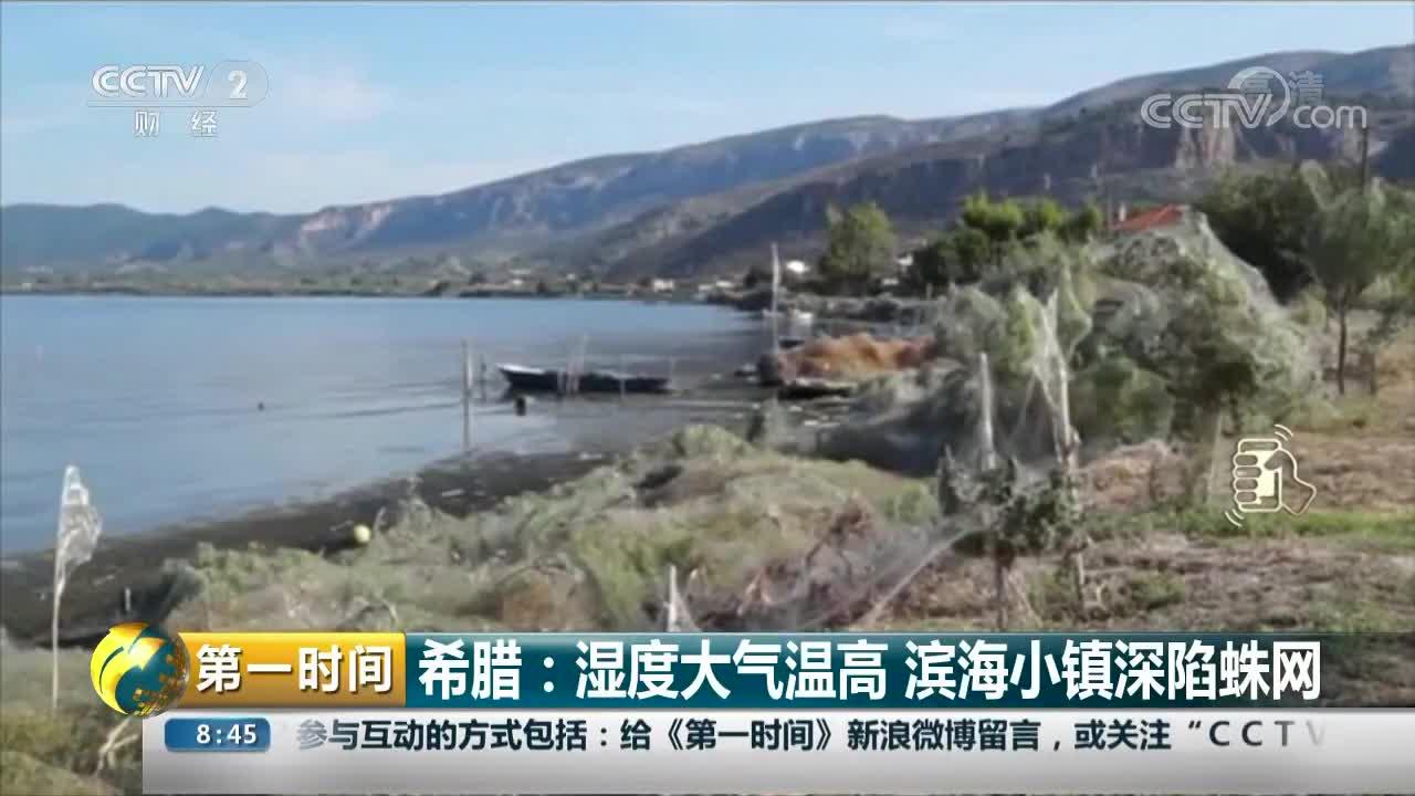 [视频]希腊:湿度大气温高 滨海小镇深陷蛛网