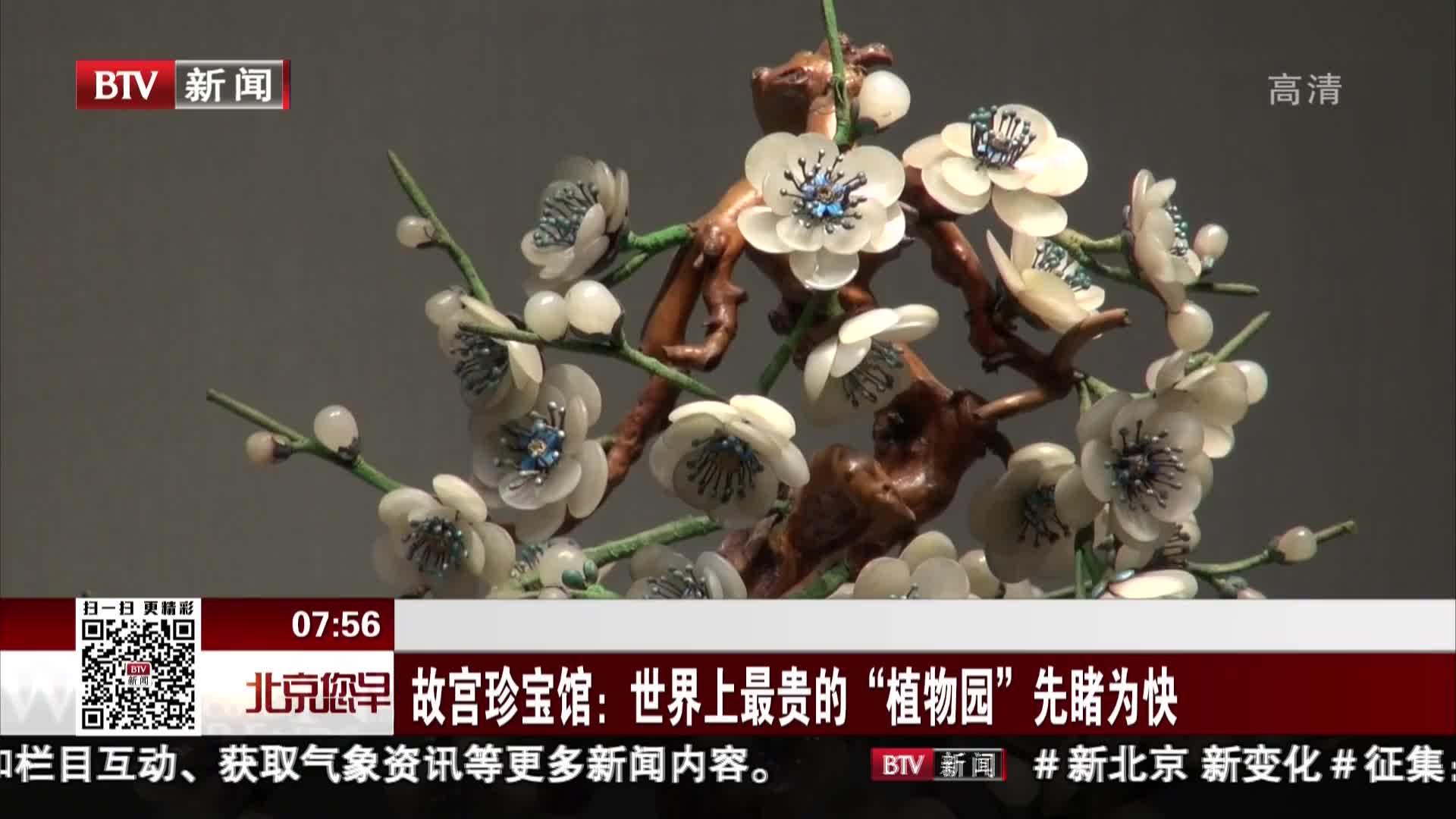 """[视频]故宫珍宝馆:世界上最贵的""""植物园""""先睹为快"""