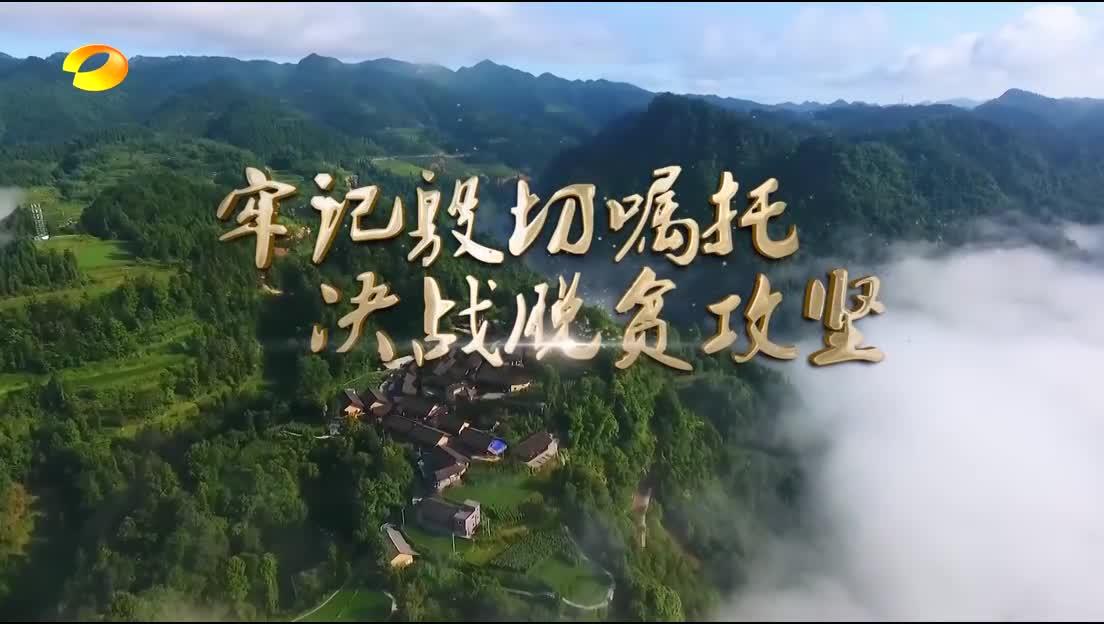 2019年02月12日湖南新闻联播