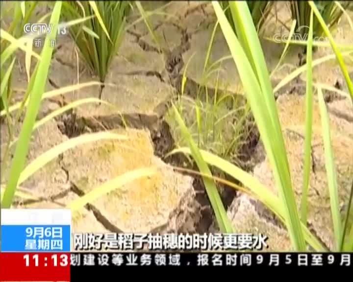 [视频]江西旱情持续 12万人饮水困难