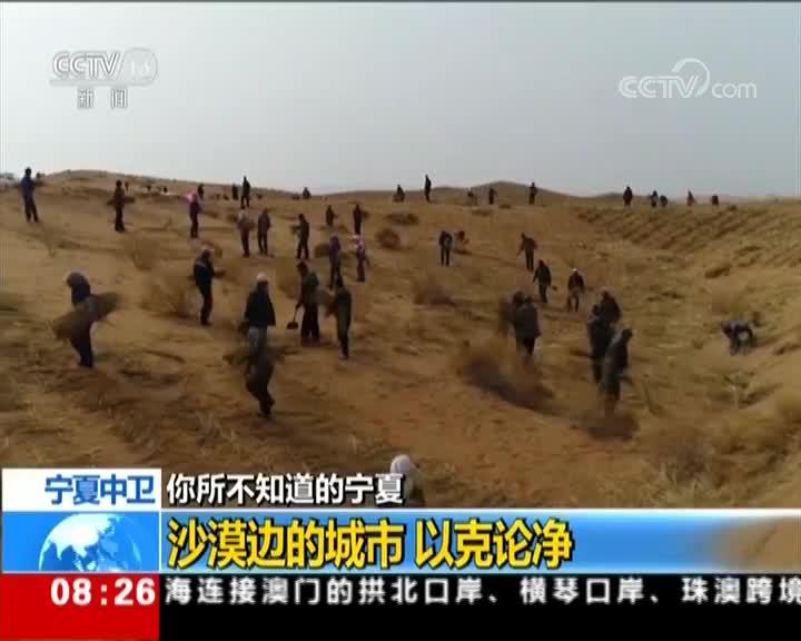 [视频]你所不知道的宁夏 宁夏中卫 沙漠边的城市 以克论净