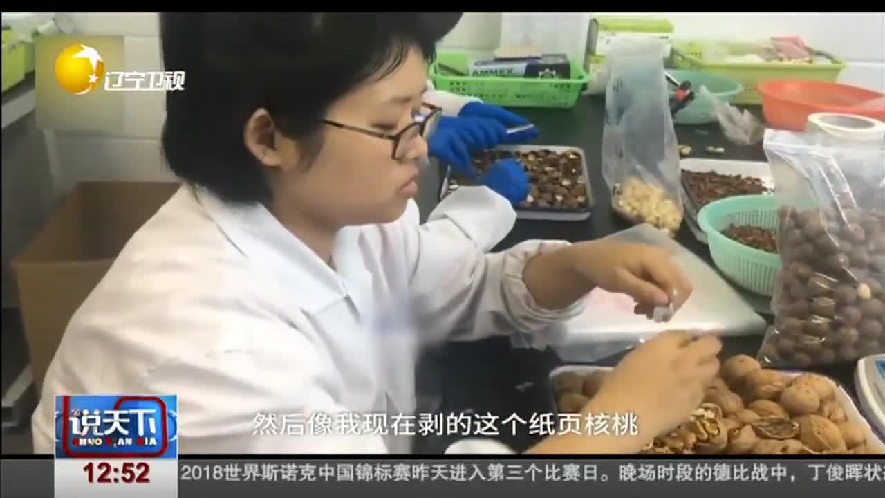 [视频]日尝10多种坚果 试吃员为工作半年胖10斤