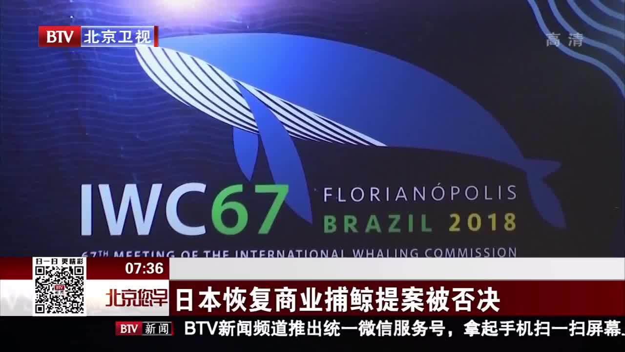[视频]日本恢复商业捕鲸提案被否决